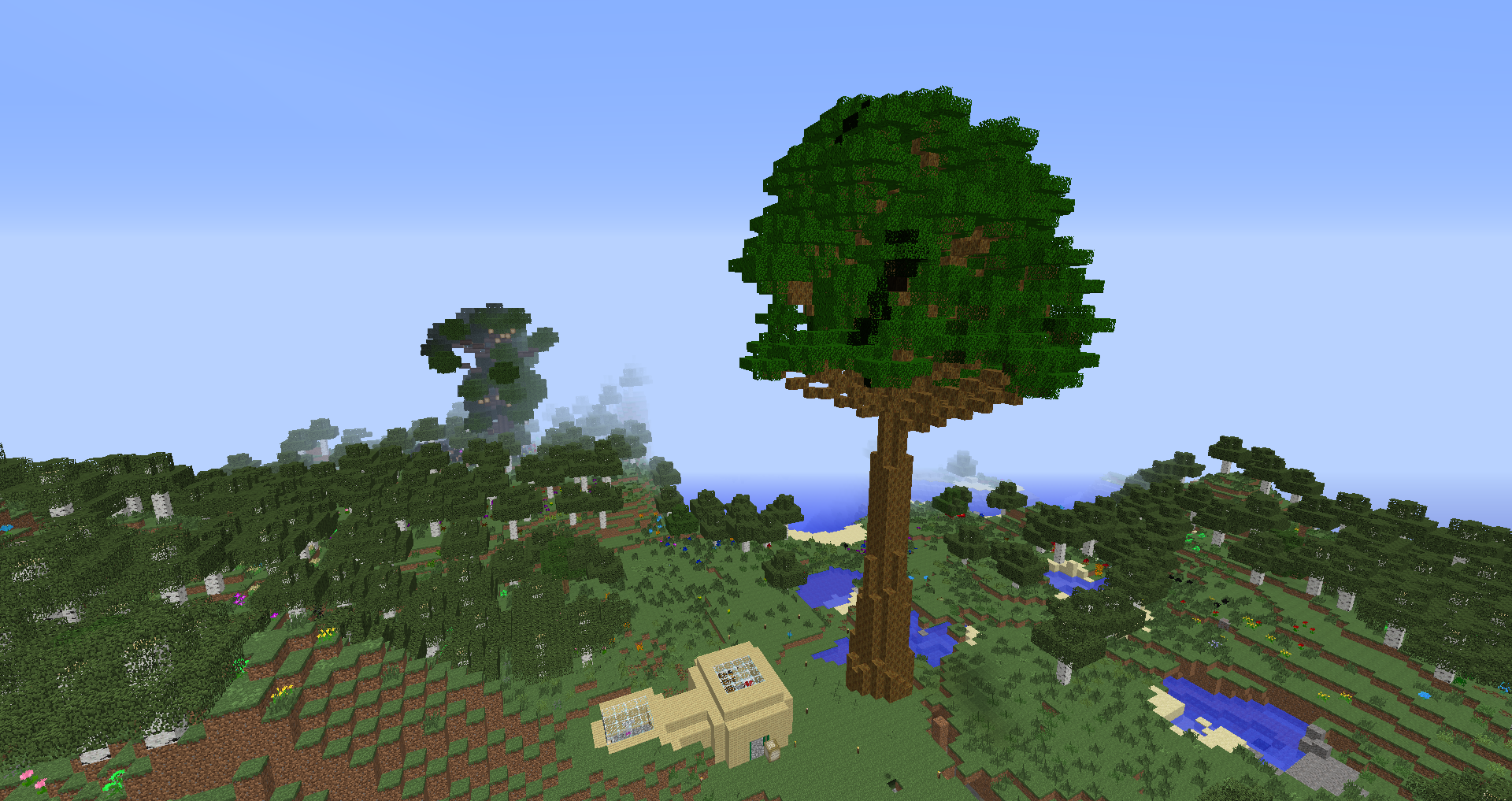 Growing Sacred Trees